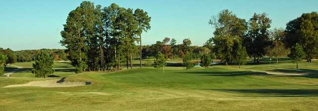 Hollows GC - Road: #6