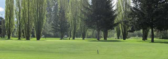 Newaukum Valley GC: Practice area