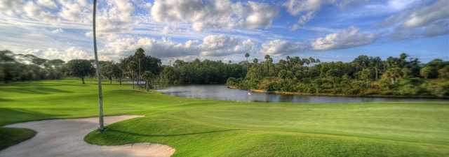 Palm Harbor Golf Club: #1