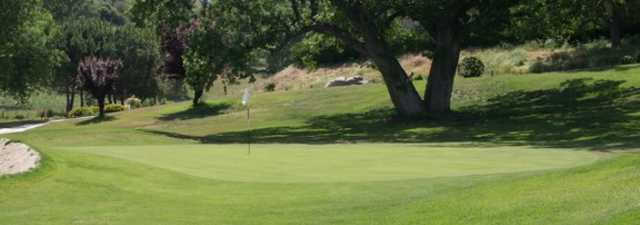 Horse Thief CC: #9
