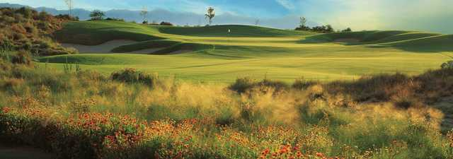 Devil's Claw at Whirlwind GC: #9