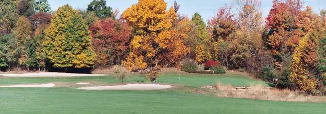 Cherry Wood GC