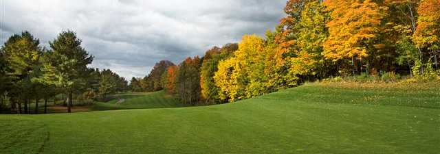 Victoria Park Valley GC - Pines: #7