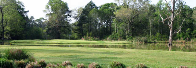 Red Wolf Golf Resort: #16