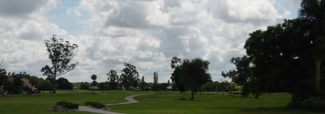 Hibiscus GC: #4