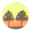 Twin Oaks Golf & Country Club Logo