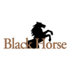 BlackHorse at Bayonet/Black Horse Golf Course Logo