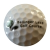 Ballinger Park Golf Club Logo