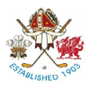 St. David's City Golf Club Logo