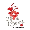 Beaune Levernois Golf Club - 9 Holes Course Logo