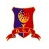 Andino Golf Club Logo
