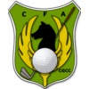 Circulo de la Fuerza Aerea - Cabeza de Caballo Club Logo