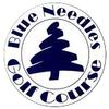 Blue Needle Golf Course Logo