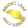 Par 3 at Bright Leaf Golf Resort Logo