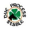 Due Process Stable Logo