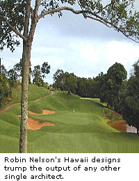 Robin Nelson: Hawaii Designs