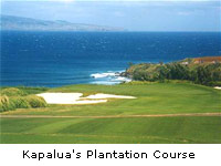 Kapalua's Plantation Course