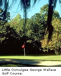 Little Ocmulgee Golf