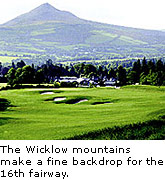 Powerscourt Fairway