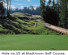 No. 15 at Blackmoor Golf Course