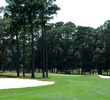 Hilton Head National Golf Club - Weed Course - Hole 3