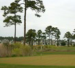 Tidewater Golf Club - Marsh
