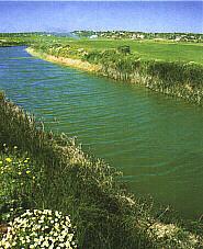 Salgados Golf Club