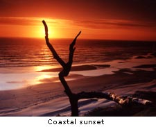 Coastal Sunset