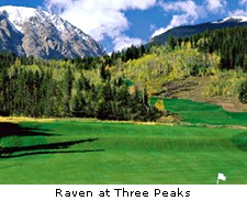 Raven at Threee Peaks